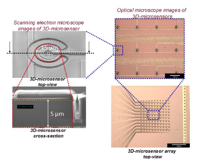 Figura 1. Esquema de una matriz de microdosímetros fabricada por el CNM (Barcelona).